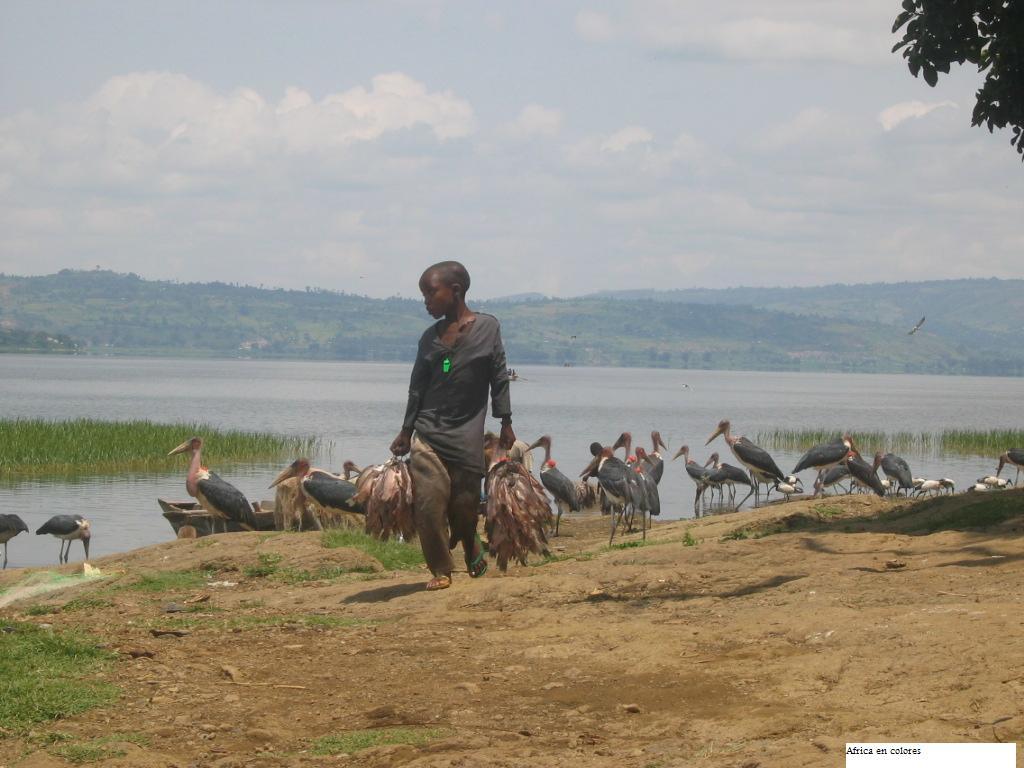 Prosiguen los esfuerzos por salvar vidas en el cuerno de África