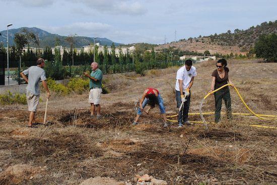 IDimar colabora con SOS Arboles