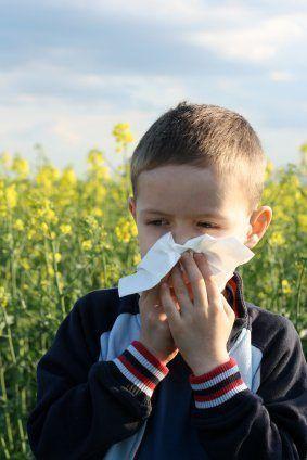 Polen Alergia