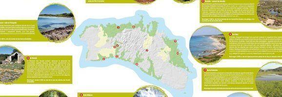 Itineraris per conèixer la Flora a Menorca