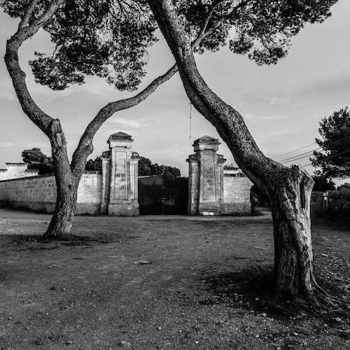 Fotografia de Manolo Sosa