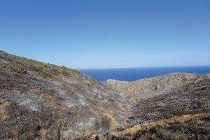Imatge d'una zona costanera de la Trapa desolada pel foc.
