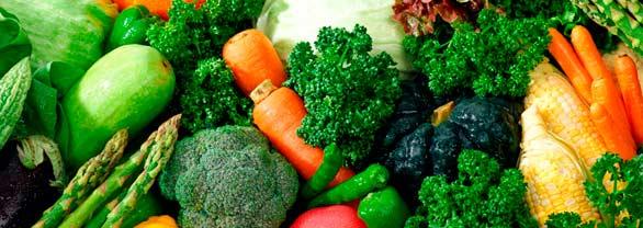 Las verduras ecológicas tienen mejor sabor y son productos de mayor calidad, además su cultivo es respetuoso con el medio ambiente.