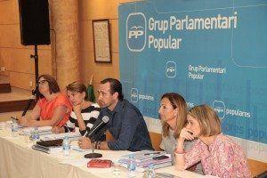 Bauzà desea pactar con el resto de grupos parlamentarios esta propuesta.