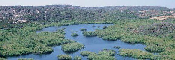 Albufera des Grau. Parc Natural de Menorca, Reserva de la Biosfera.