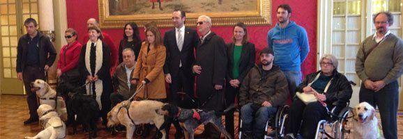 Los perros de asistencia son hoy una herramienta necesaria que mejora la accesibilidad, la participación e integración de las personas con discapacidad en el entorno y en la sociedad.