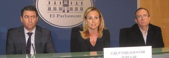 Cabrer, Jerez y Veramendi han declarado sobre la moción de los socialistas que se debate mañana.