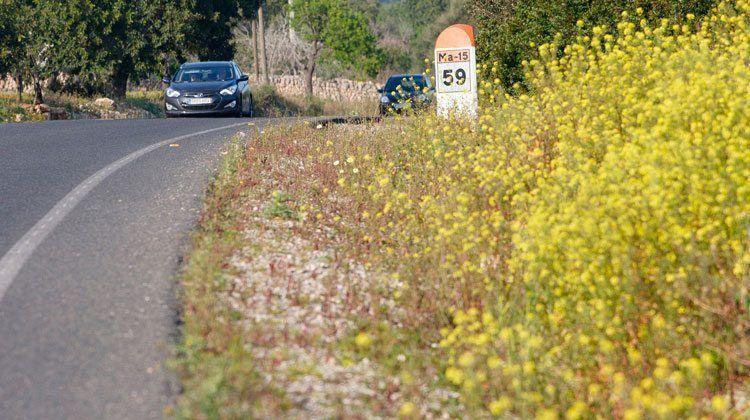 Les carreteres de Mallorca tornen a tenir les voreres florides.