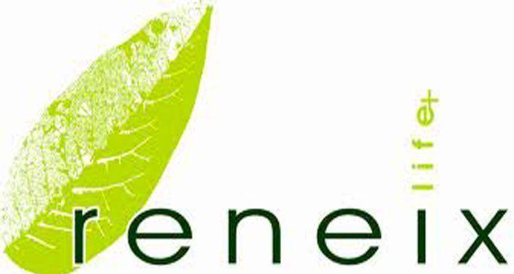 Logotip de Life+Renèix