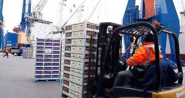 Trabajador dedicado al transporte de mercancías de exportación.