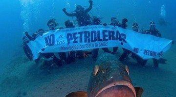 No podem confiar en la Declaració Ambiental Negativa