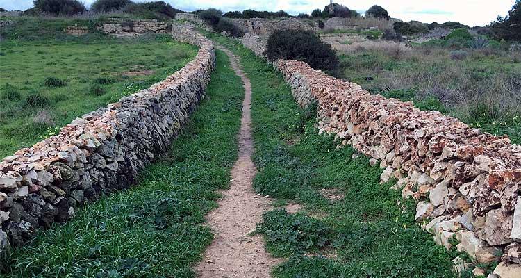 Camí Verd Es Castell