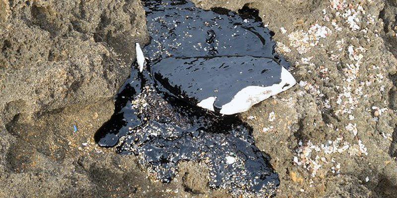Restes hidrocarbur a Menorca