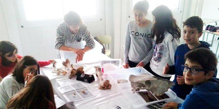 Activitats didàctiques sobre la Menorca Talaiòtica