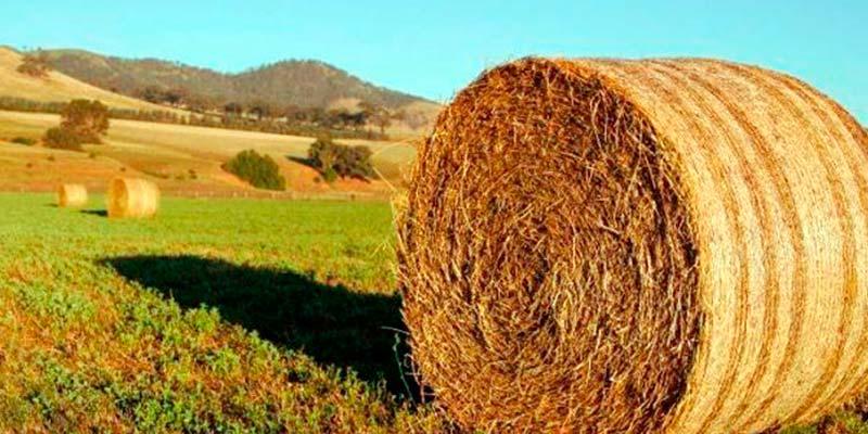 FAGME sobre las ayudas para la inversión agrícola