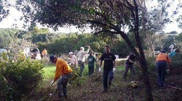 Ajuts en matèria d'actuacions de voluntariat
