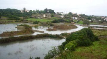 El PP insta a retomar el proyecto de los pluviales