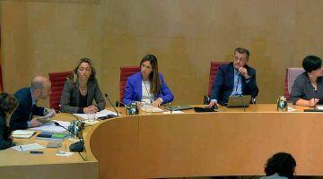 Ple Consell Insular de Menorca