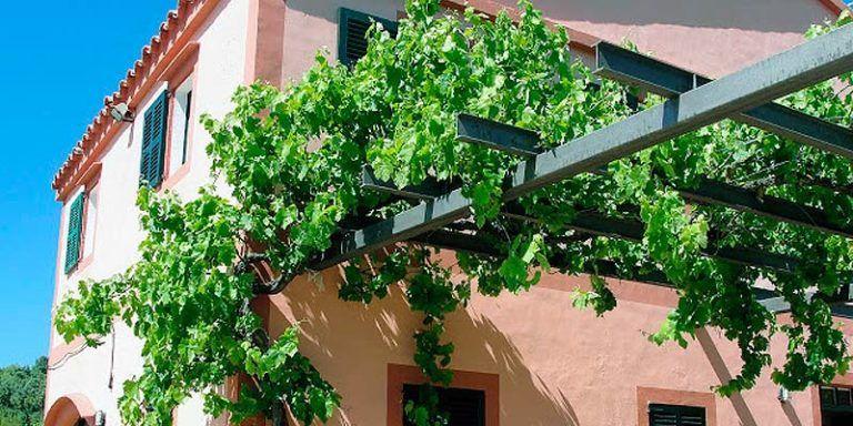 Es Pinaret - Ciutadella de Menorca