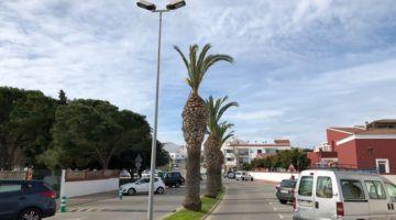 Obras en la calles Ses Escoles y Verge del Toro de Alaior
